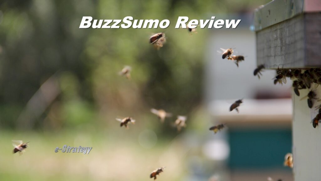 BuzzSumo Review