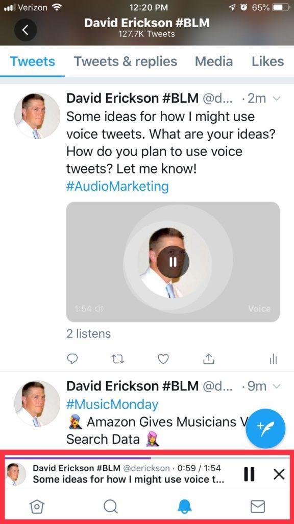Screenshot: Voice Tweet Play