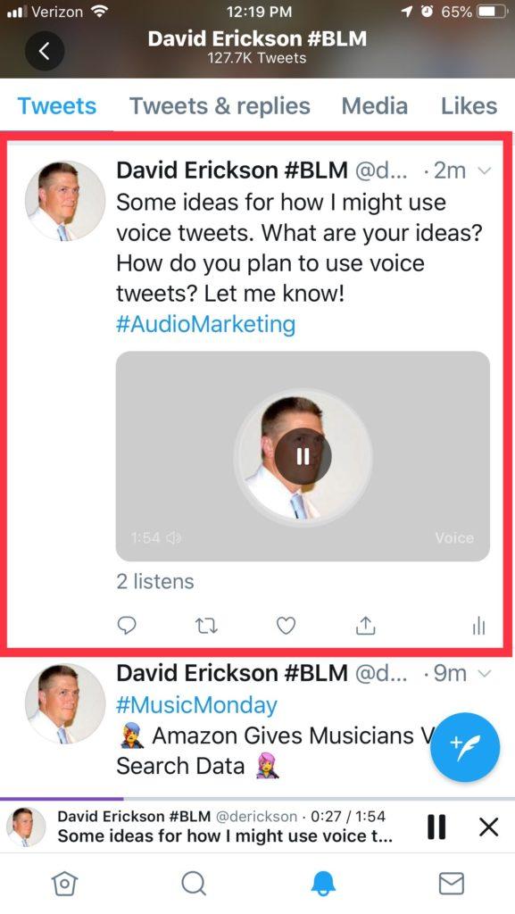 Screenshot: Voice Tweet Timeline