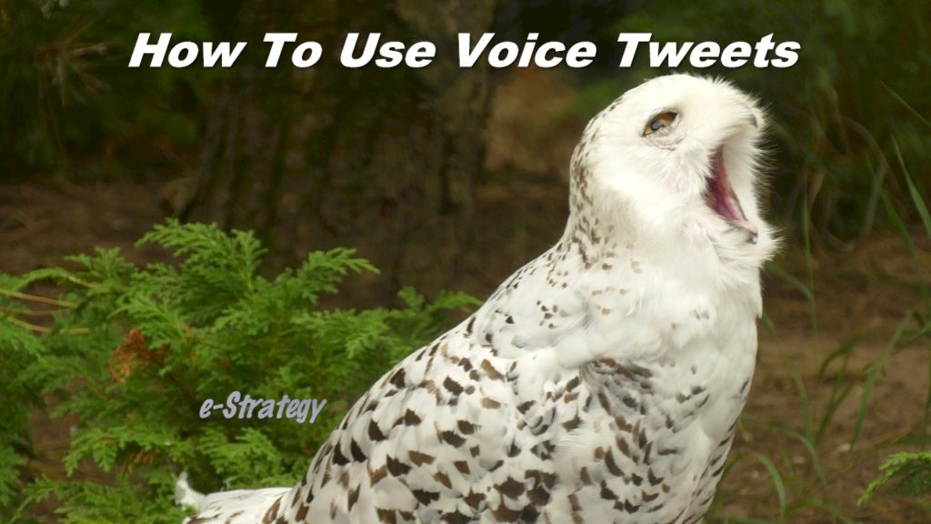 How To Use Voice Tweets