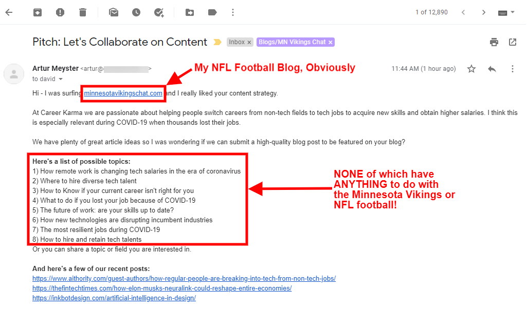 Screenshot: Completely Irrelevant Pitch Email to Minnesota Vikings Blog.