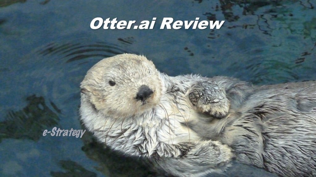 Otter.ai Review
